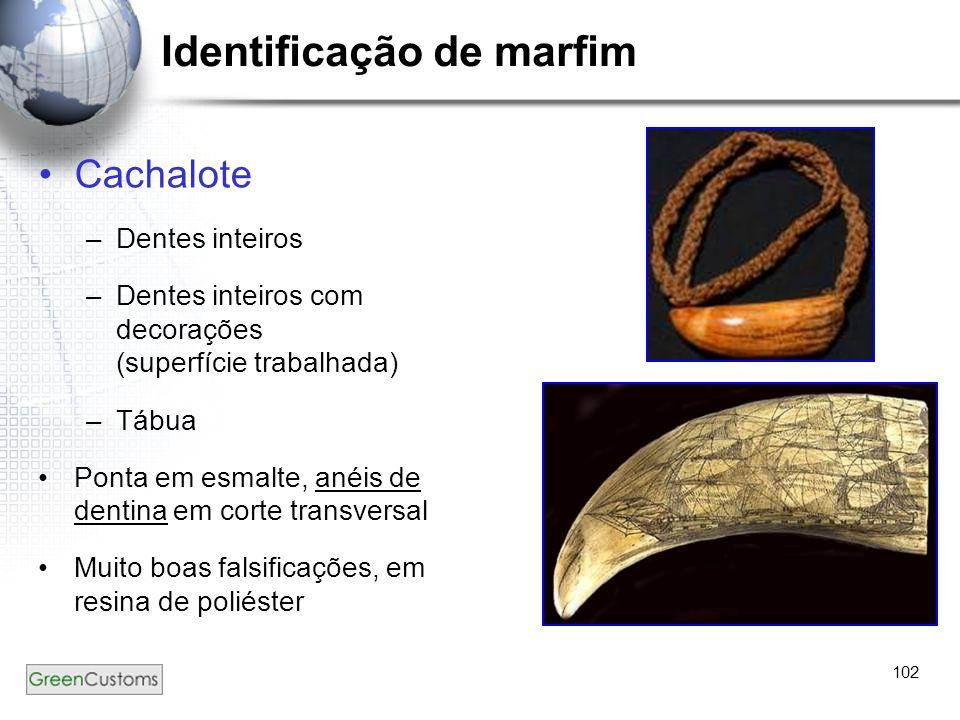 102 Identificação de marfim Cachalote –Dentes inteiros –Dentes inteiros com decorações (superfície trabalhada) –Tábua Ponta em esmalte, anéis de denti