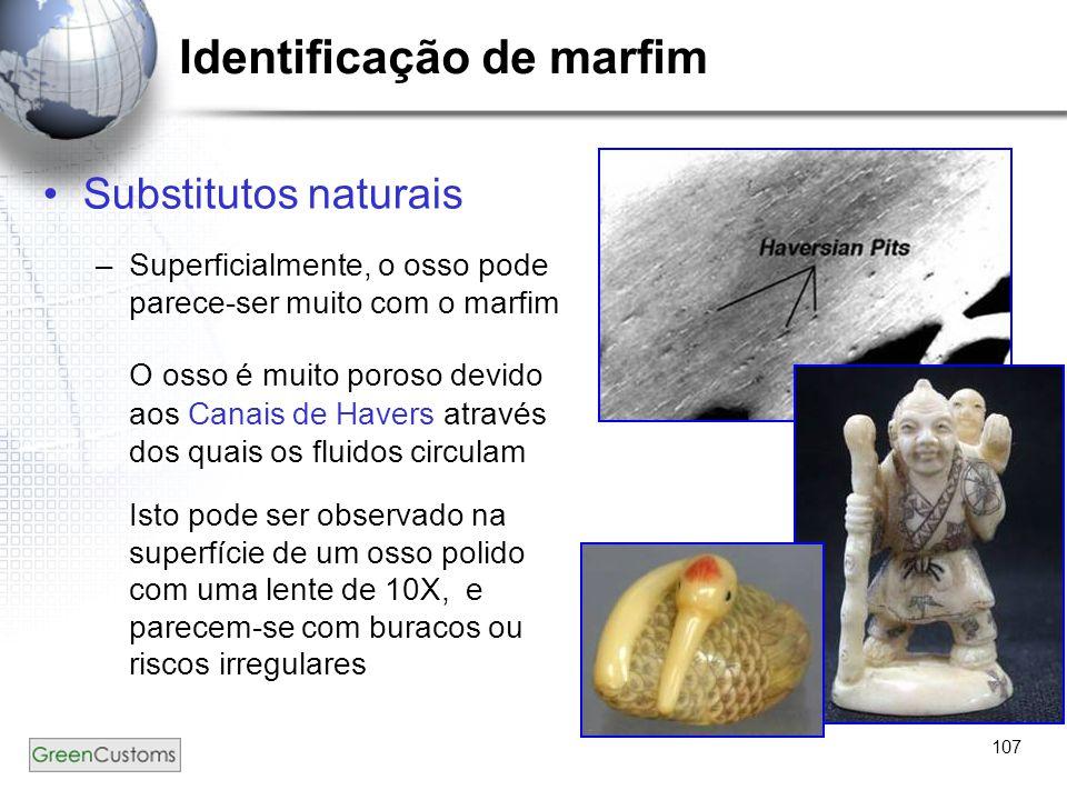 107 Identificação de marfim Substitutos naturais –Superficialmente, o osso pode parece-ser muito com o marfim O osso é muito poroso devido aos Canais