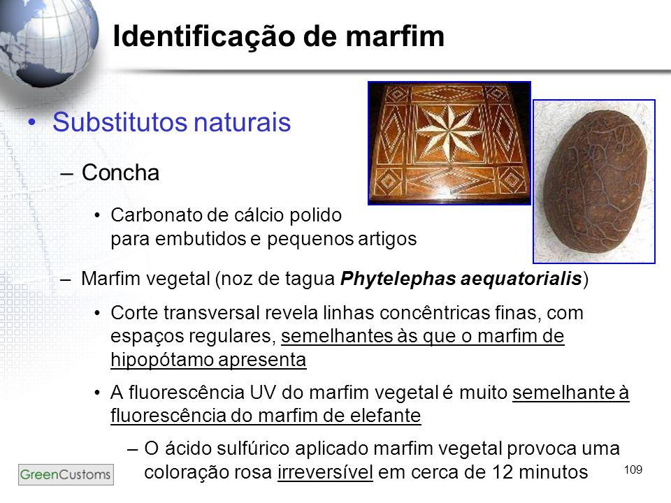 109 Substitutos naturais –Concha Carbonato de cálcio polido para embutidos e pequenos artigos –Marfim vegetal (noz de tagua Phytelephas aequatorialis)