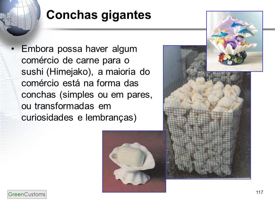 117 Conchas gigantes Embora possa haver algum comércio de carne para o sushi (Himejako), a maioria do comércio está na forma das conchas (simples ou e