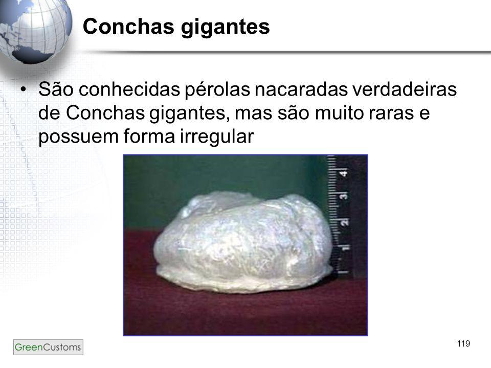 119 Conchas gigantes São conhecidas pérolas nacaradas verdadeiras de Conchas gigantes, mas são muito raras e possuem forma irregular