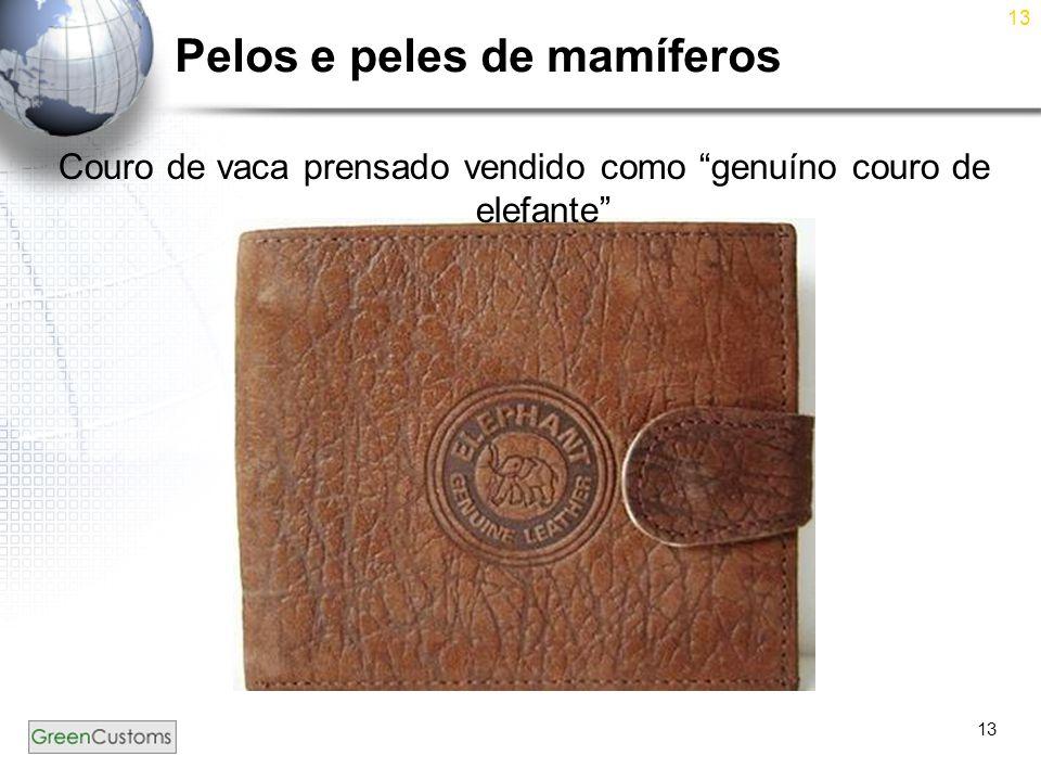 """13 Pelos e peles de mamíferos Couro de vaca prensado vendido como """"genuíno couro de elefante"""""""