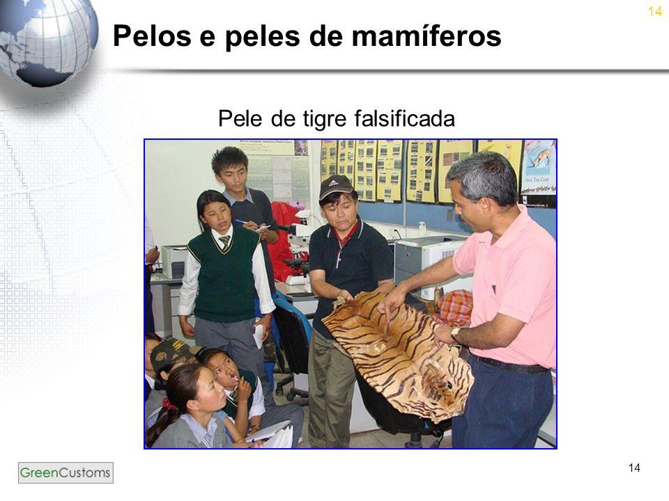 14 Pelos e peles de mamíferos Pele de tigre falsificada