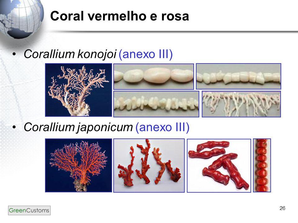 26 Coral vermelho e rosa Corallium konojoi (anexo III) Corallium japonicum (anexo III)