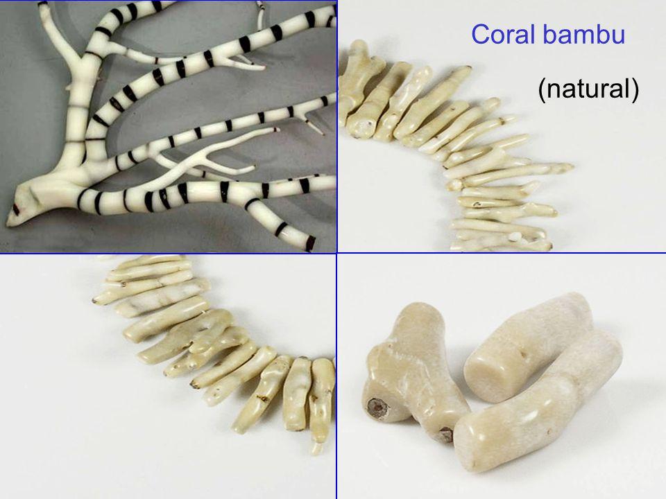 34 Coral bambu (natural)