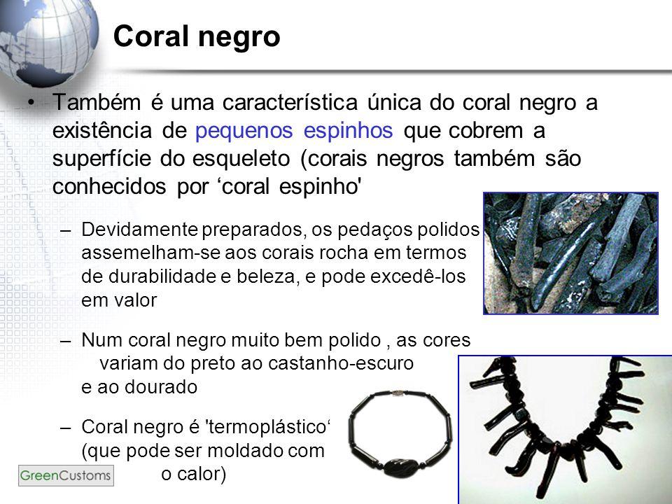 37 Coral negro Também é uma característica única do coral negro a existência de pequenos espinhos que cobrem a superfície do esqueleto (corais negros