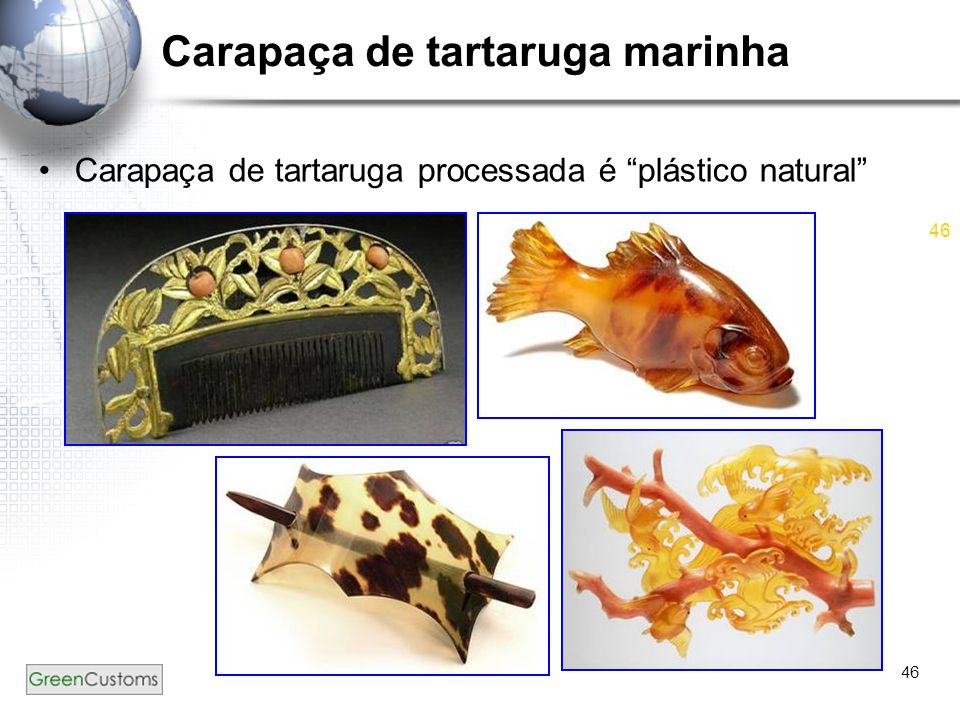 """46 Carapaça de tartaruga marinha Carapaça de tartaruga processada é """"plástico natural"""""""