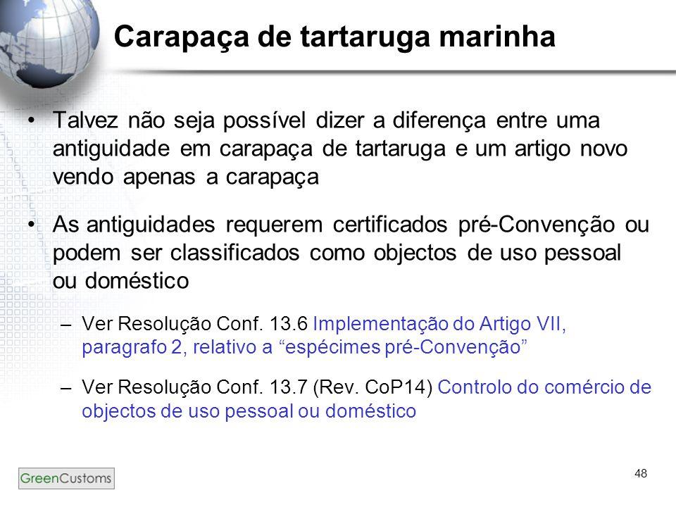 48 Carapaça de tartaruga marinha Talvez não seja possível dizer a diferença entre uma antiguidade em carapaça de tartaruga e um artigo novo vendo apen