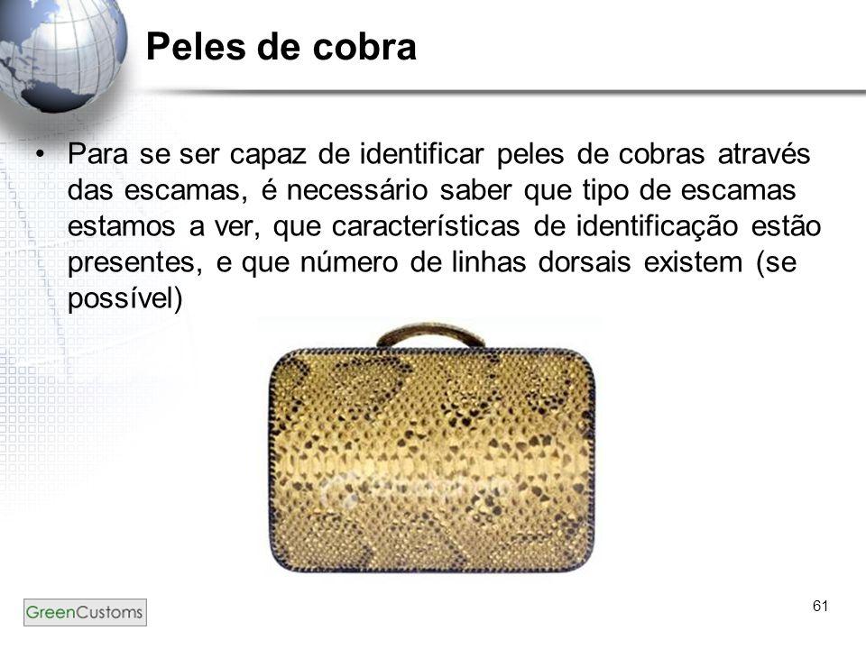 61 Peles de cobra Para se ser capaz de identificar peles de cobras através das escamas, é necessário saber que tipo de escamas estamos a ver, que cara