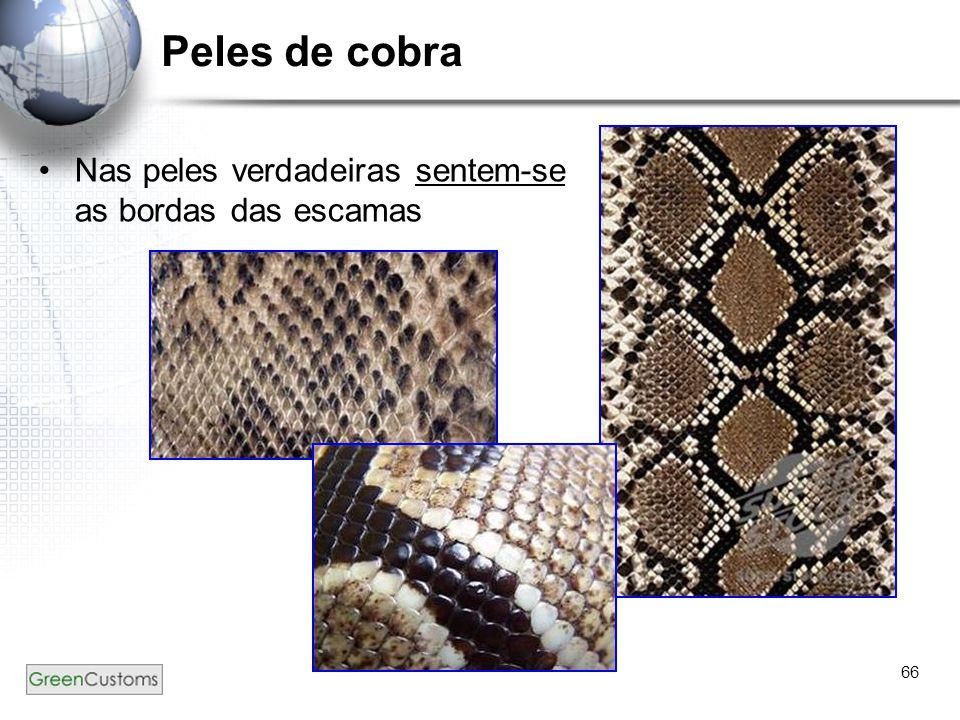 66 Peles de cobra Nas peles verdadeiras sentem-se as bordas das escamas