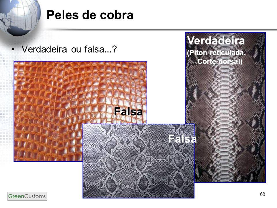 68 Peles de cobra Verdadeira ou falsa...? Verdadeira (Piton reticulada. Corte dorsal) Falsa
