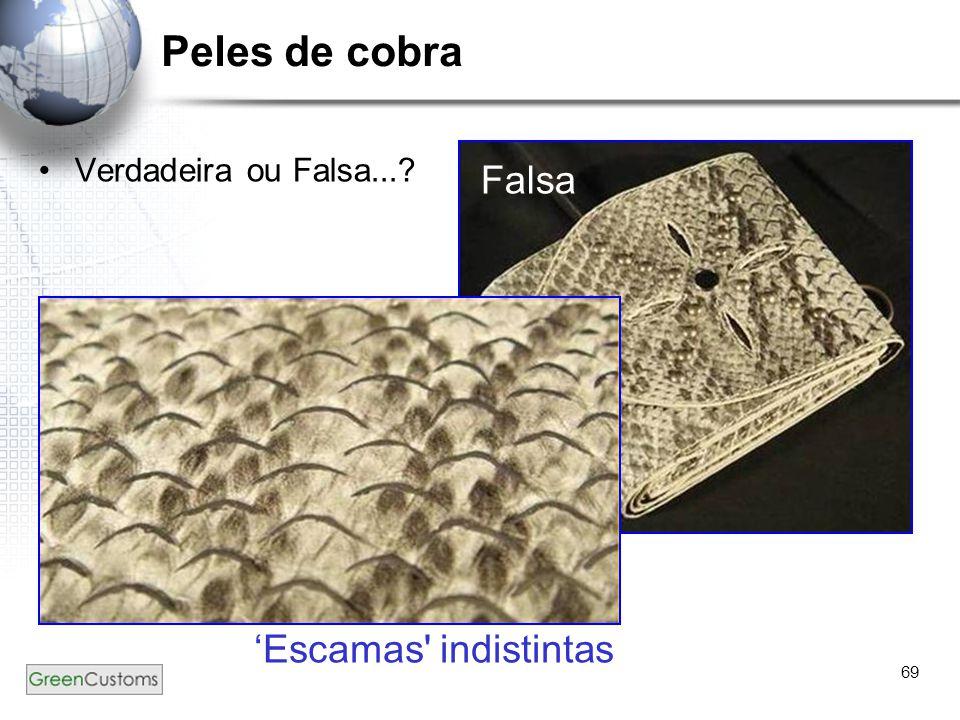 69 Peles de cobra Verdadeira ou Falsa...? Falsa 'Escamas' indistintas