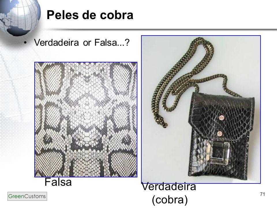 71 Peles de cobra Verdadeira or Falsa...? Falsa Verdadeira (cobra)