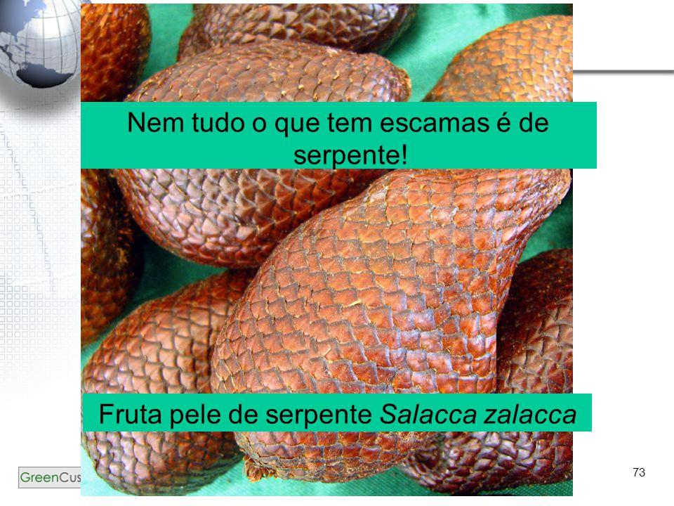 73 ?? Nem tudo o que tem escamas é de serpente! Fruta pele de serpente Salacca zalacca