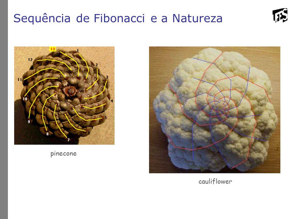 Sequência de Fibonacci e a Natureza