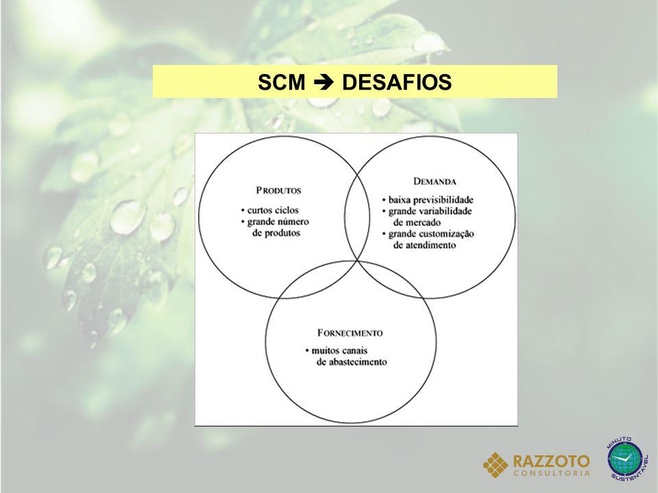 SCM  DESAFIOS