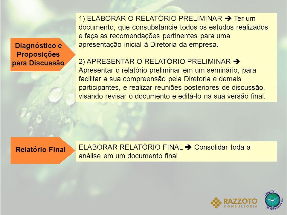 Diagnóstico e Proposições para Discussão 1) ELABORAR O RELATÓRIO PRELIMINAR  Ter um documento, que consubstancie todos os estudos realizados e faça a