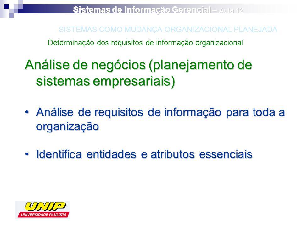 Análise de negócios (planejamento de sistemas empresariais) Análise de requisitos de informação para toda a organizaçãoAnálise de requisitos de inform