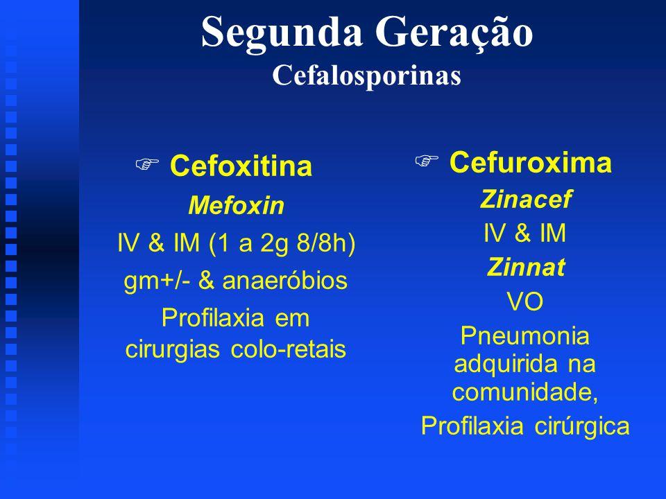 Segunda Geração Cefalosporinas F Cefoxitina Mefoxin IV & IM (1 a 2g 8/8h) gm+/- & anaeróbios Profilaxia em cirurgias colo-retais F Cefuroxima Zinacef