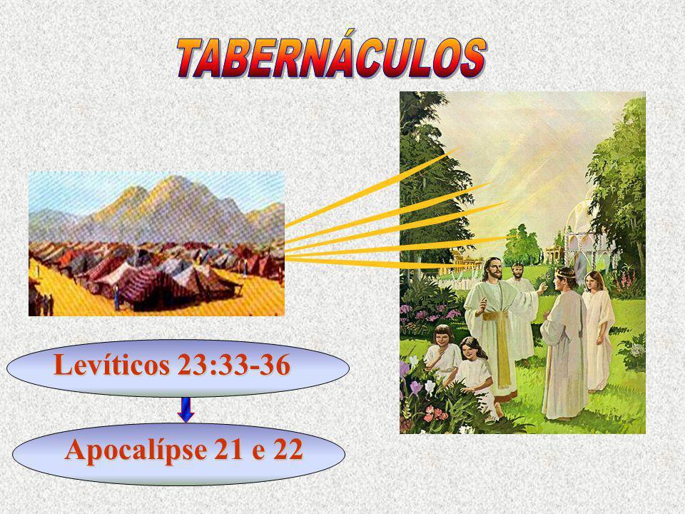 Levíticos 23:33-36 Apocalípse 21 e 22