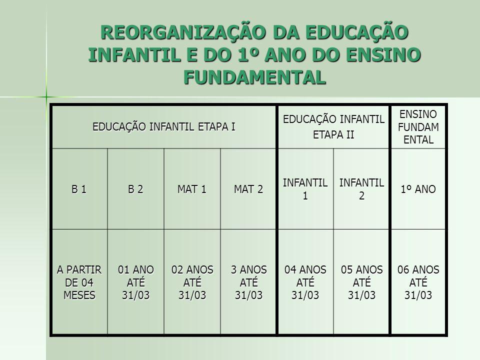 REORGANIZAÇÃO DA EDUCAÇÃO INFANTIL E DO 1º ANO DO ENSINO FUNDAMENTAL EDUCAÇÃO INFANTIL ETAPA I EDUCAÇÃO INFANTIL ETAPA II ENSINO FUNDAM ENTAL B 1 B 2 MAT 1 MAT 2 INFANTIL 1 INFANTIL 2 1º ANO A PARTIR DE 04 MESES 01 ANO ATÉ 31/03 02 ANOS ATÉ 31/03 3 ANOS ATÉ 31/03 04 ANOS ATÉ 31/03 05 ANOS ATÉ 31/03 06 ANOS ATÉ 31/03