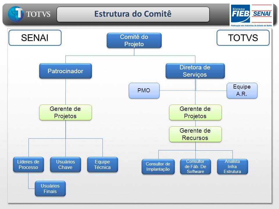 Estrutura do Comitê Comitê do Projeto Patrocinador Líderes de Processo Gerente de Projetos Usuários Chave Equipe Técnica Usuários Finais Diretora de S