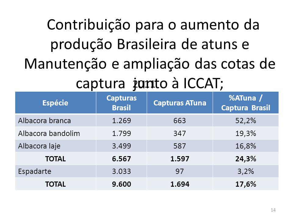 Contribuição para o aumento da produção Brasileira de atuns e Manutenção e ampliação das cotas de captura junto à ICCAT; 14 Espécie Capturas Brasil Ca