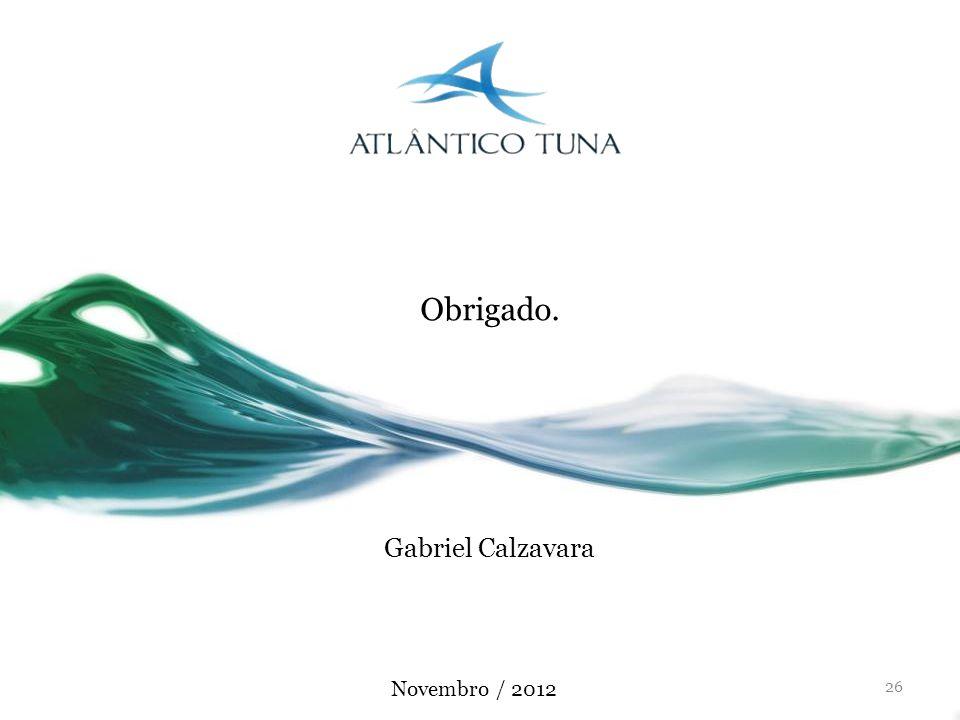 26 Gabriel Calzavara Obrigado. Novembro / 2012