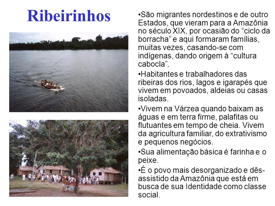 """Ribeirinhos São migrantes nordestinos e de outro Estados, que vieram para a Amazônia no século XIX, por ocasião do """"ciclo da borracha"""" e aqui formaram"""