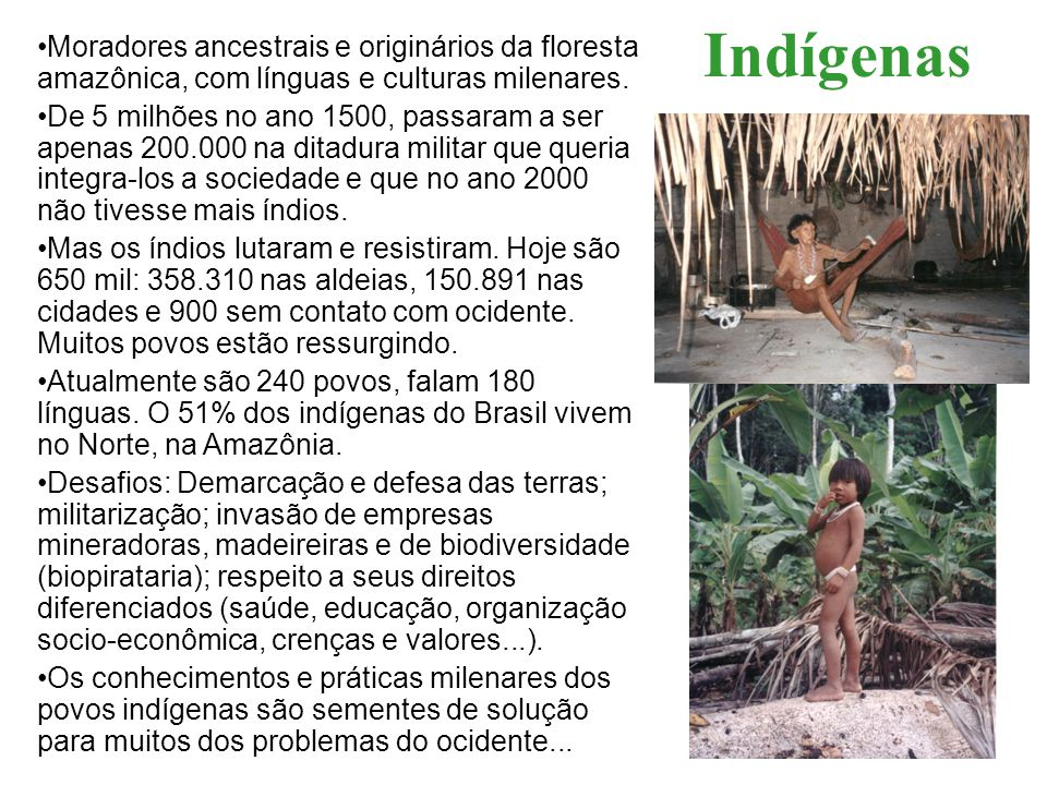 Moradores ancestrais e originários da floresta amazônica, com línguas e culturas milenares. De 5 milhões no ano 1500, passaram a ser apenas 200.000 na