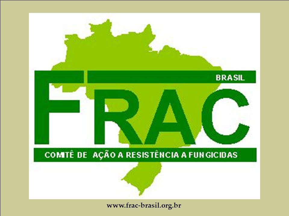 www.frac-brasil.org.br