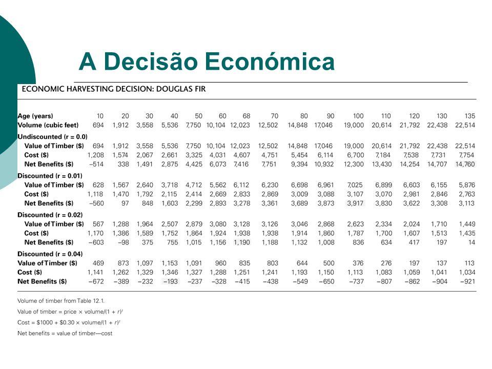 A Decisão Económica