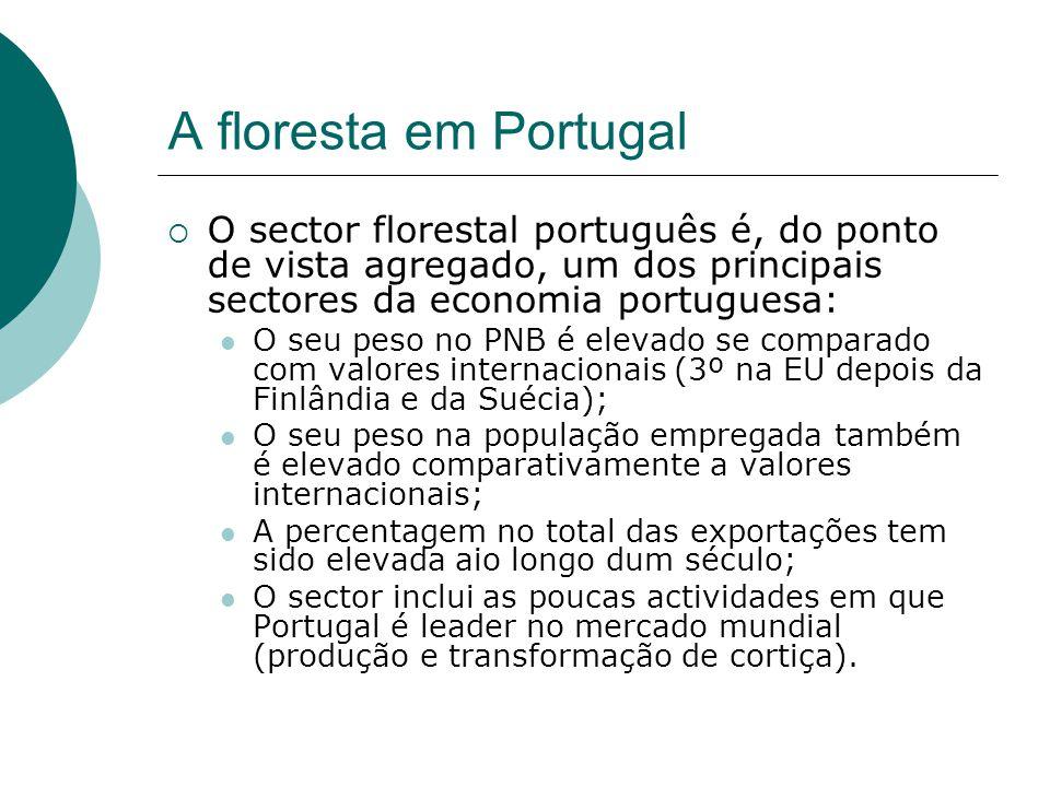 A floresta em Portugal  O sector florestal português é, do ponto de vista agregado, um dos principais sectores da economia portuguesa: O seu peso no