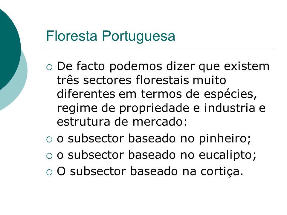Composição da floresta em Portugal Continental 0 200000 400000 600000 800000 1000000 1200000 1400000 186719101920192919391956196819851995 years hectares Maritime pineCork oak Holm oak Other broadleavesEucalyptus