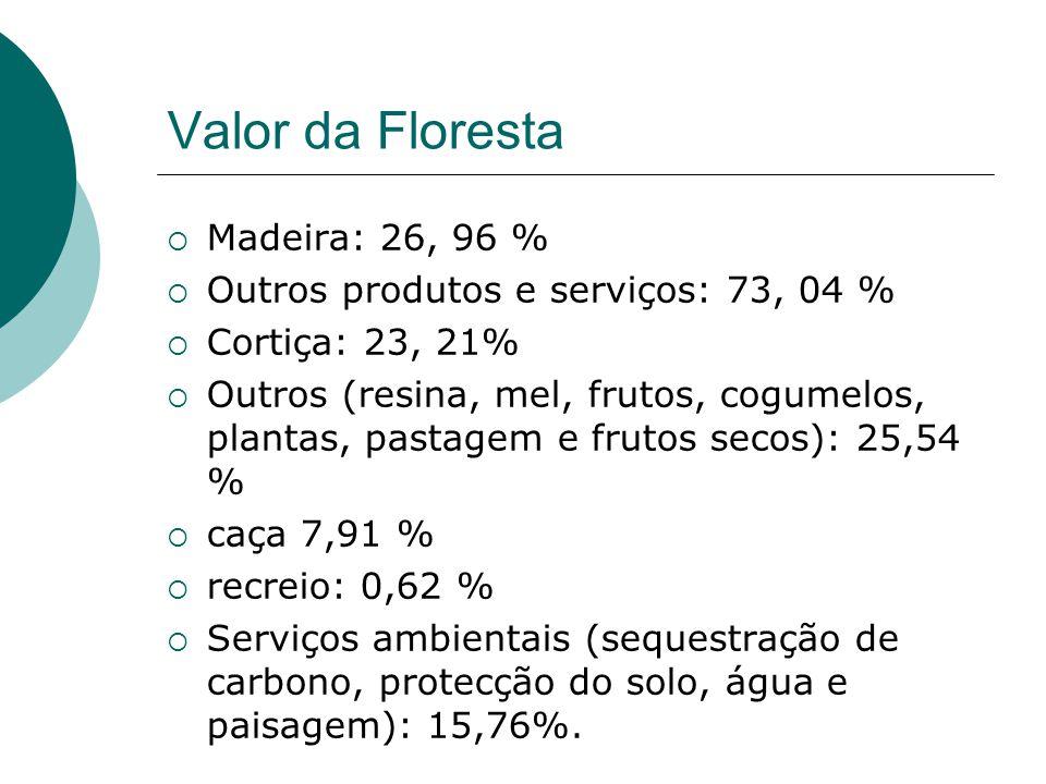 Valor da Floresta  Madeira: 26, 96 %  Outros produtos e serviços: 73, 04 %  Cortiça: 23, 21%  Outros (resina, mel, frutos, cogumelos, plantas, pas