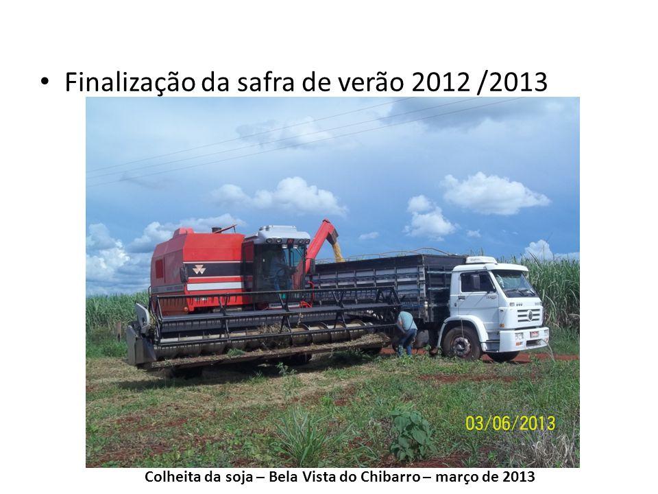 Finalização da safra de verão 2012 /2013 Colheita da soja – Bela Vista do Chibarro – março de 2013