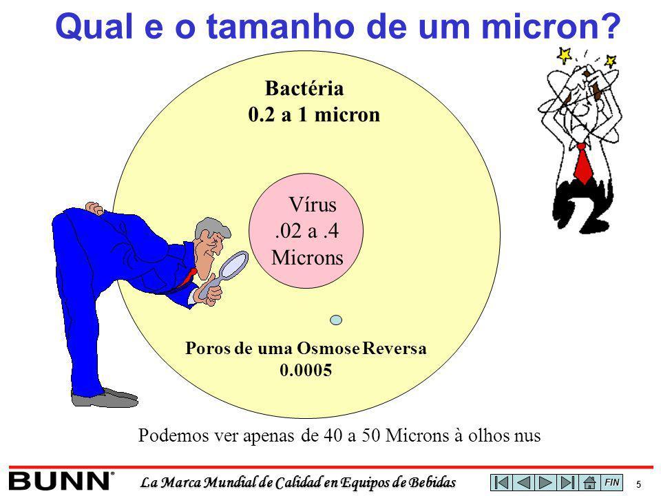 La Marca Mundial de Calidad en Equipos de Bebidas 5 Bactéria 0.2 a 1 micron Poros de uma Osmose Reversa 0.0005 Vírus.02 a.4 Microns Qual e o tamanho de um micron.