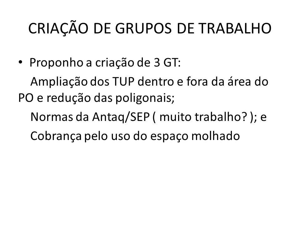 CRIAÇÃO DE GRUPOS DE TRABALHO Proponho a criação de 3 GT: Ampliação dos TUP dentro e fora da área do PO e redução das poligonais; Normas da Antaq/SEP ( muito trabalho.