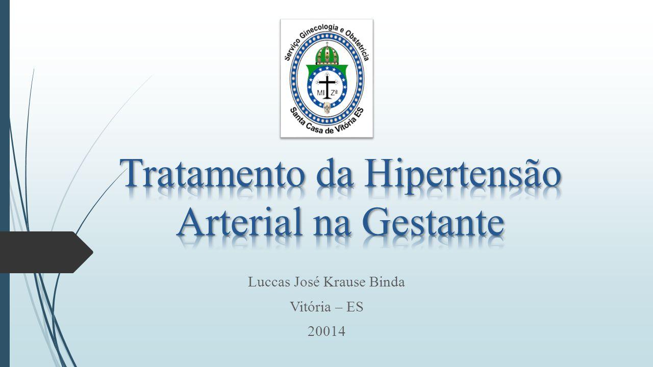 Luccas José Krause Binda Vitória – ES 20014
