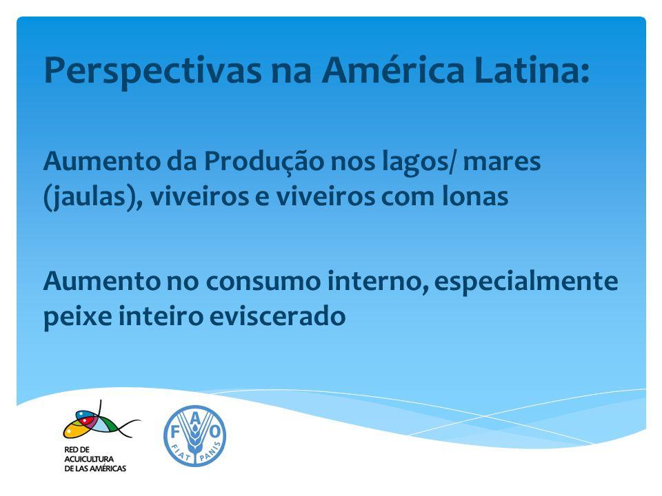 Perspectivas na América Latina: Aumento da Produção nos lagos/ mares (jaulas), viveiros e viveiros com lonas Aumento no consumo interno, especialmente