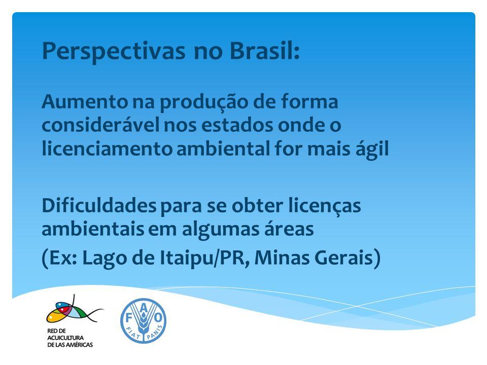 Perspectivas no Brasil: Aumento na produção de forma considerável nos estados onde o licenciamento ambiental for mais ágil Dificuldades para se obter