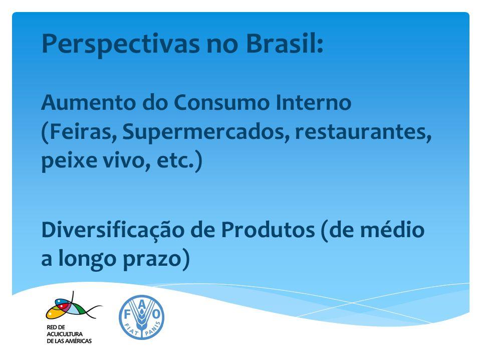 Perspectivas no Brasil: Aumento do Consumo Interno (Feiras, Supermercados, restaurantes, peixe vivo, etc.) Diversificação de Produtos (de médio a long