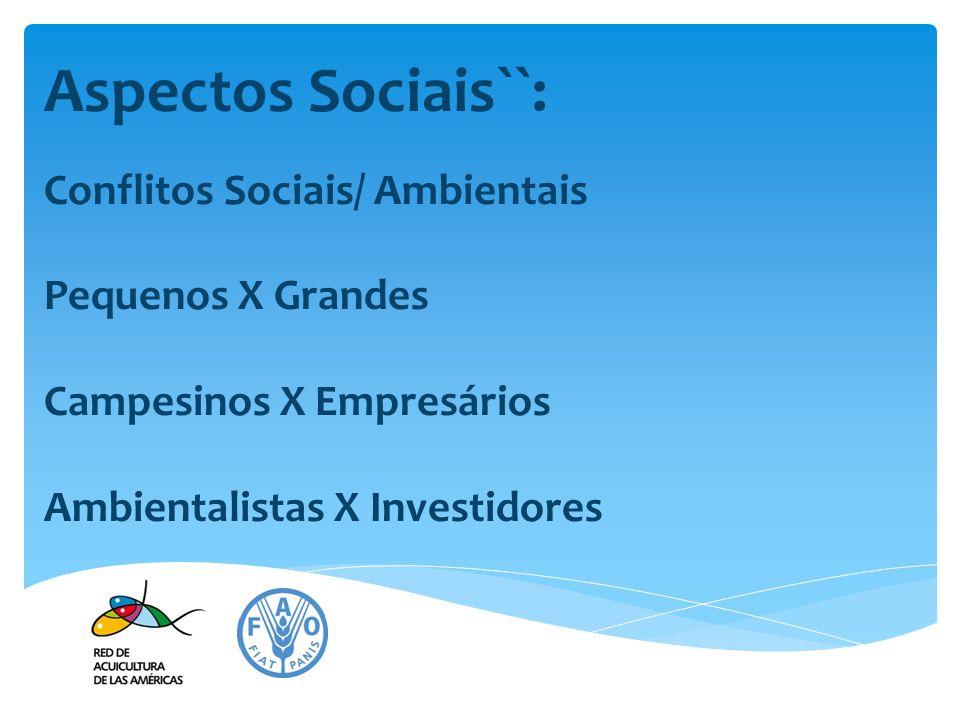Aspectos Sociais``: Conflitos Sociais/ Ambientais Pequenos X Grandes Campesinos X Empresários Ambientalistas X Investidores