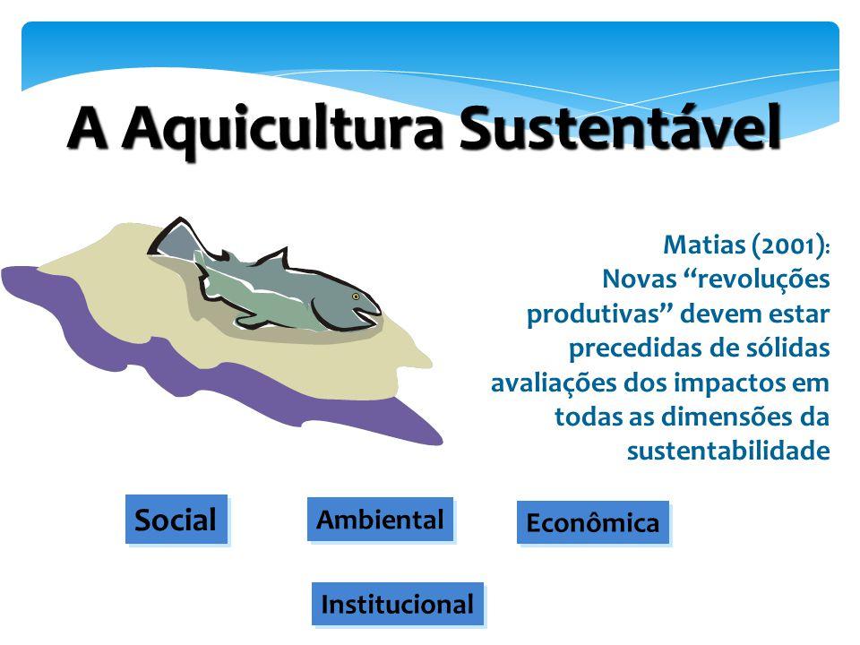 """Matias (2001) : Novas """"revoluções produtivas"""" devem estar precedidas de sólidas avaliações dos impactos em todas as dimensões da sustentabilidade Econ"""