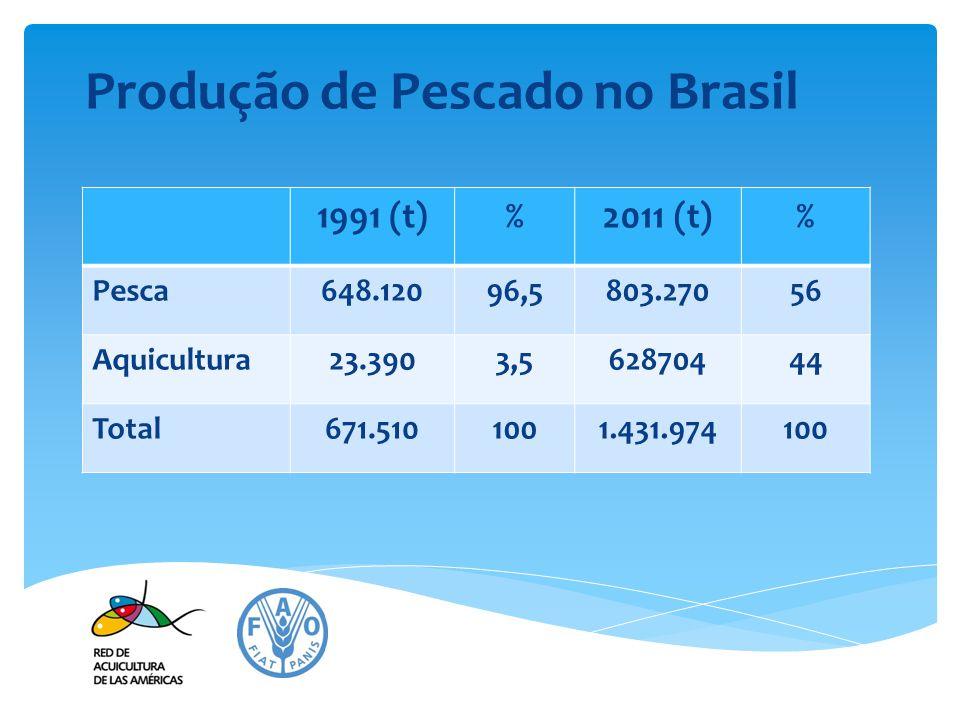 Produção de Pescado no Brasil 1991 (t)%2011 (t)% Pesca648.12096,5803.27056 Aquicultura23.3903,562870444 Total671.5101001.431.974100