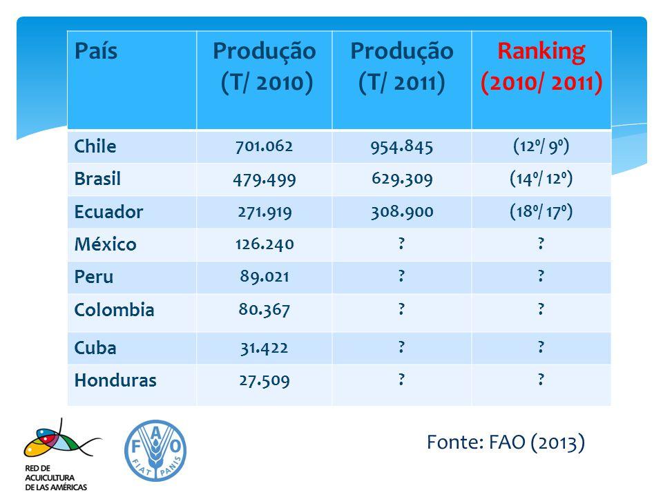 PaísProdução (T/ 2010) Produção (T/ 2011) Ranking (2010/ 2011) Chile 701.062954.845(12⁰/ 9⁰) Brasil 479.499629.309(14⁰/ 12⁰) Ecuador 271.919308.900(18