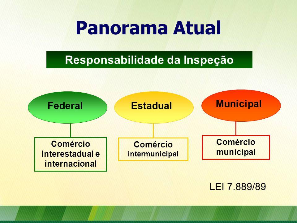 Panorama Atual FederalEstadual Municipal Comércio Interestadual e internacional Comércio intermunicipal Comércio municipal LEI 7.889/89 Responsabilidade da Inspeção