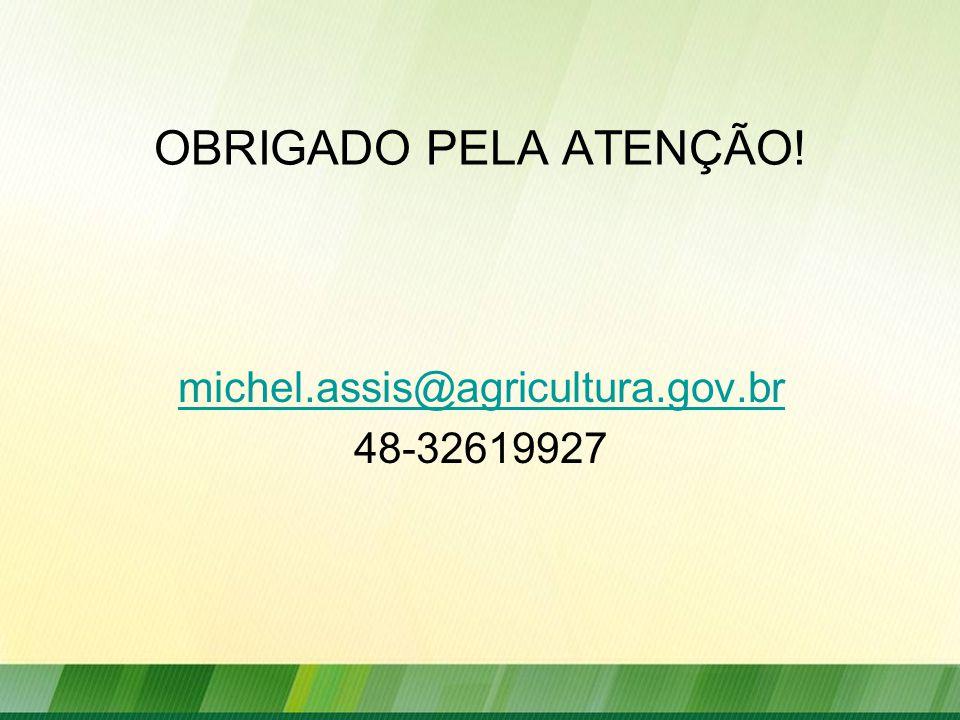 OBRIGADO PELA ATENÇÃO! michel.assis@agricultura.gov.br 48-32619927