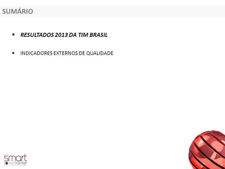 SUMÁRIO  RESULTADOS 2013 DA TIM BRASIL  INDICADORES EXTERNOS DE QUALIDADE