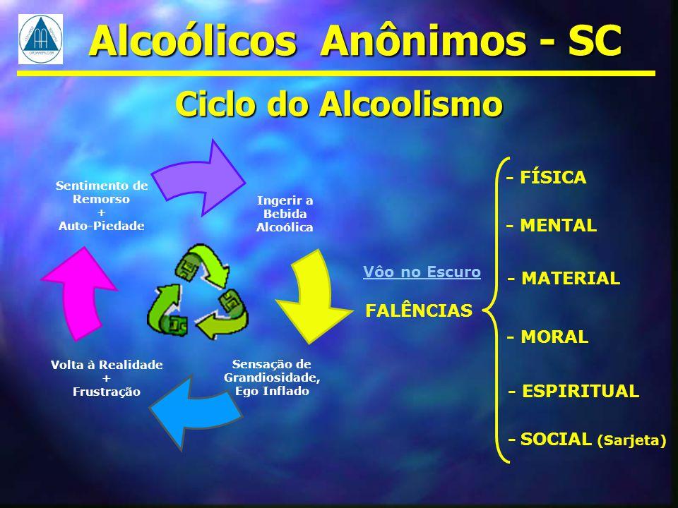 Volta à Realidade + Frustração Sentimento de Remorso + Auto-Piedade Sensação de Grandiosidade, Ego Inflado Ingerir a Bebida Alcoólica Ciclo do Alcooli